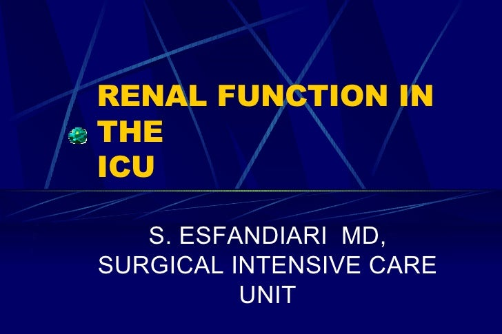 RENAL FUNCTION IN THE  ICU S. ESFANDIARI  MD, SURGICAL INTENSIVE CARE UNIT