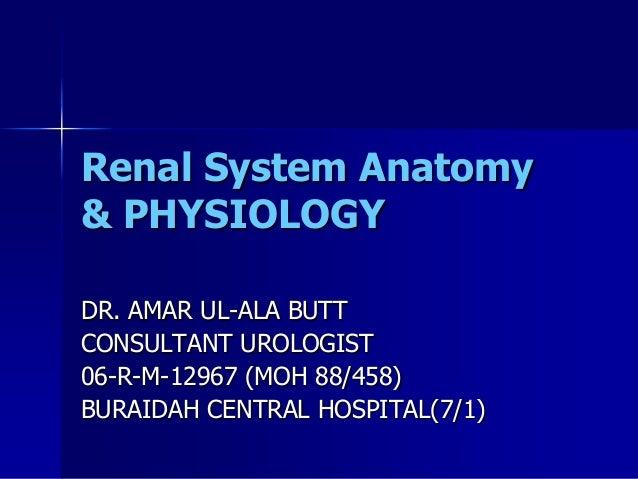 Renal System Anatomy & PHYSIOLOGY DR. AMAR UL-ALA BUTT CONSULTANT UROLOGIST 06-R-M-12967 (MOH 88/458) BURAIDAH CENTRAL HOS...