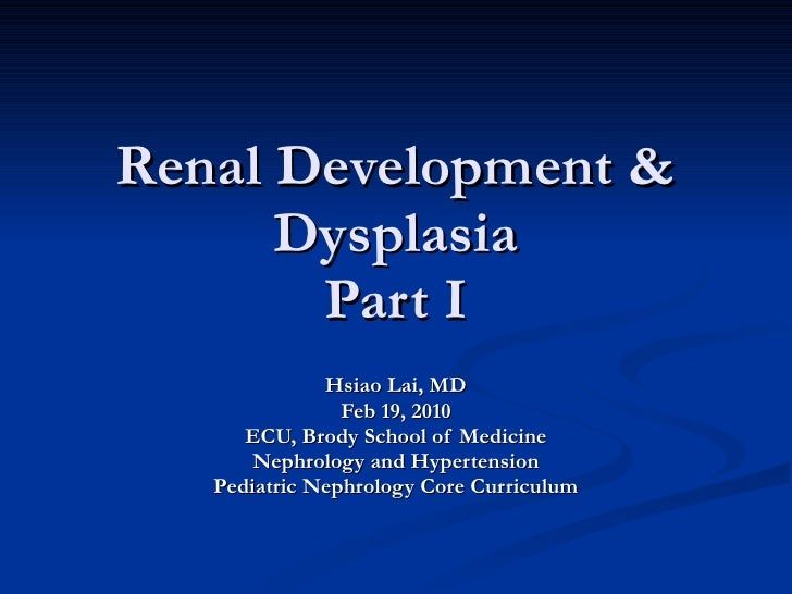 Renal Development & Dysplasia Part I Hsiao Lai, MD Feb 19, 2010 ECU, Brody School of Medicine Nephrology and Hypertension ...