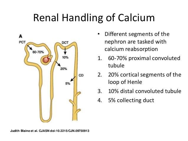 Calcium phosphate uses in food, supplement & calcium