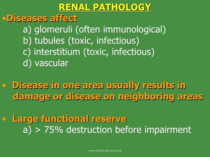 <ul><li>RENAL PATHOLOGY </li></ul><ul><li>Diseases affect </li></ul><ul><li>a) glomeruli (often immunological) </li></ul><...