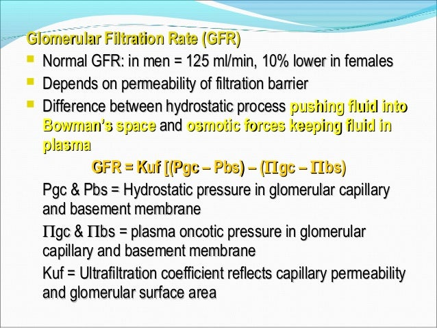 Regulation of GFR Changes in Kf (Permeability or Surface area): Mesangial Cell Contraction or Relaxation + ANP, NO - AII, ...