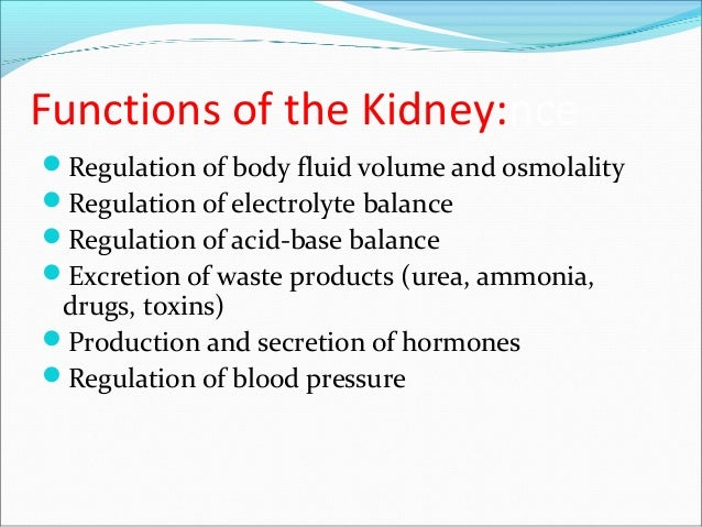 Functions of the Kidney:nce Regulation of body fluid volume and osmolality Regulation of electrolyte balance Regulation...