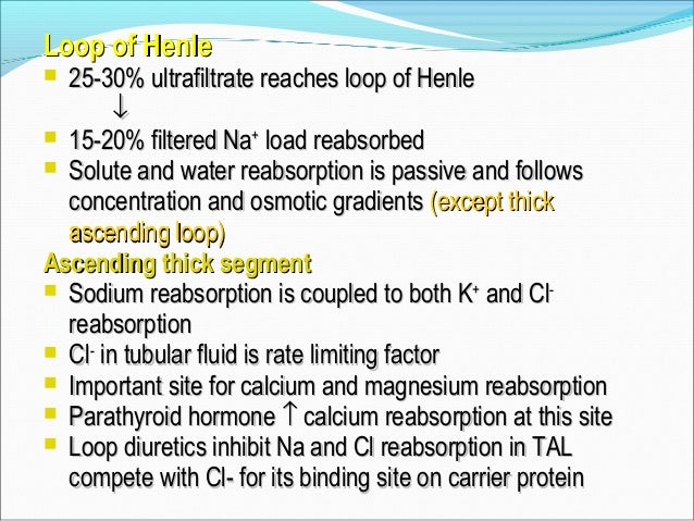 Loop of Henle Goal= make isotonic filtrate into hypertonic urine (don't waste H20!!) Counter-current multiplier:  Desce...