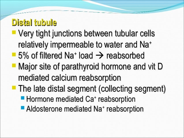 AldosteroneAldosterone  Enhances NaEnhances Na++ KK++ ATPase activity byATPase activity by ↑↑ number of open Nanumber of ...