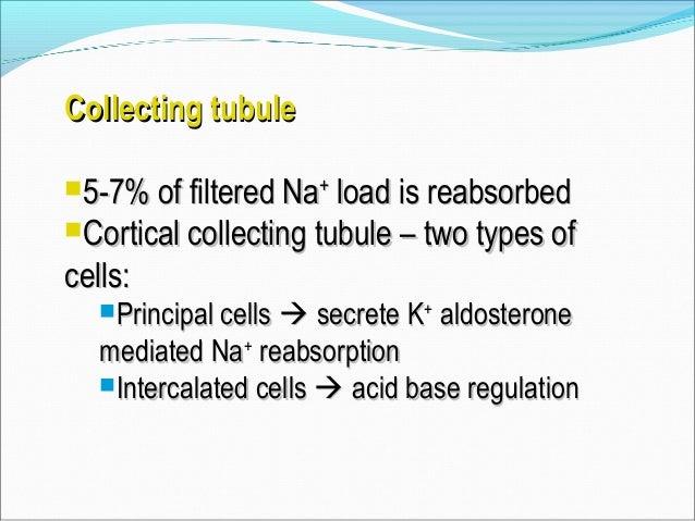 K+ sparing diureticsK+ sparing diuretics CompetitiveCompetitive  Spironolactone – aldosterone receptor antagonistSpironol...
