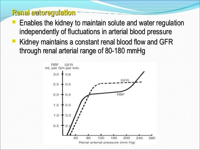 GFP = 60 mmHg (N), i.e. 60% of MAP Afferent and efferent control mechanism (myogenic)Afferent and efferent control mechani...