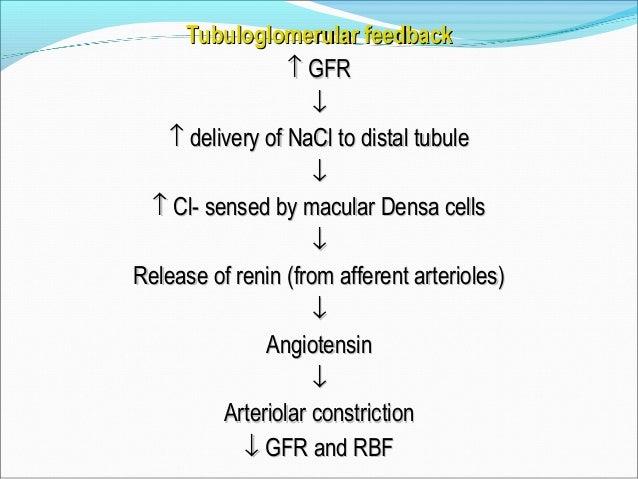 Renin angiotensin and Atrial natriuretic peptide (ANP)Renin angiotensin and Atrial natriuretic peptide (ANP)  Hypotension...