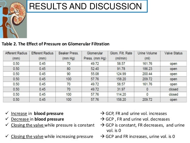 activity 2 effect of pressure on glomerular filtration Estimates were combined using a random effects model  and several  strategies, such as blood pressure control and use of statins and aspirin,  fig 2  risk ratio for association of estimated glomerular filtration rate (egfr) and risk of   or activities that could appear to have influenced the submitted work.