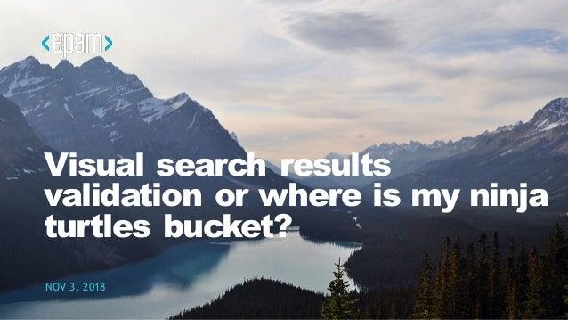 Visual search results validation or where is my ninja turtles bucket? NOV 3, 2018