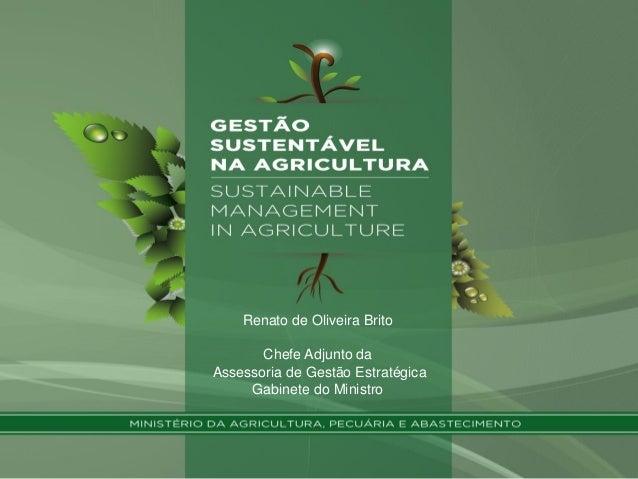 Renato de Oliveira Brito Chefe Adjunto da Assessoria de Gestão Estratégica Gabinete do Ministro