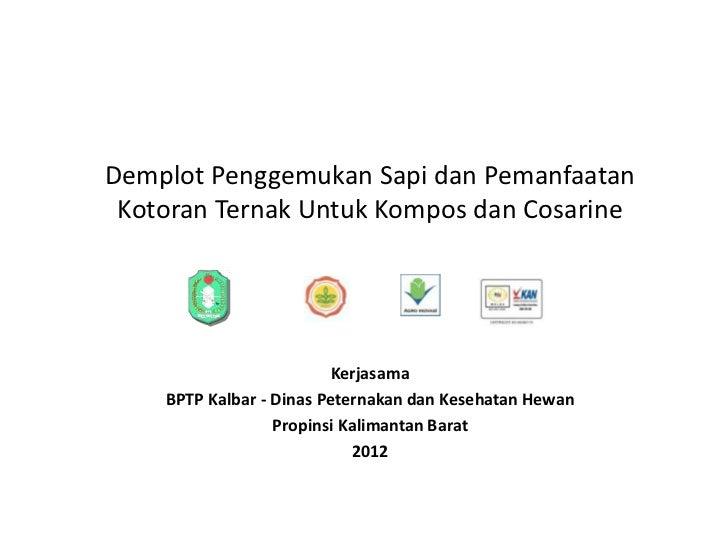 Demplot Penggemukan Sapi dan Pemanfaatan Kotoran Ternak Untuk Kompos dan Cosarine                          Kerjasama    BP...