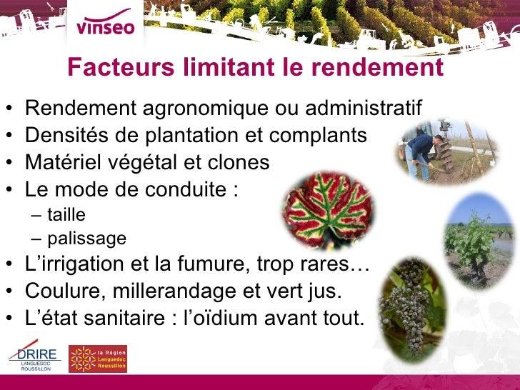 Rendements Vinseo 2009 Slide 3