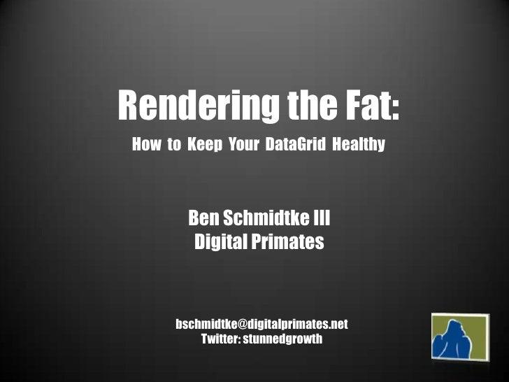 Rendering the Fat:<br />How  to  Keep  Your  DataGrid  Healthy<br />Ben Schmidtke III<br />Digital Primates<br />bschmidtk...