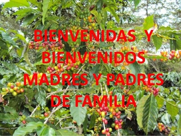 BIENVENIDAS Y BIENVENIDOS MADRES Y PADRES DE FAMILIA