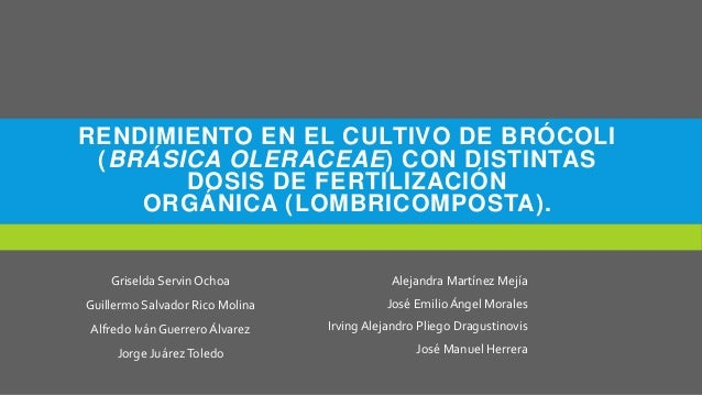 RENDIMIENTO EN EL CULTIVO DE BRÓCOLI (BRÁSICA OLERACEAE) CON DISTINTAS DOSIS DE FERTILIZACIÓN ORGÁNICA (LOMBRICOMPOSTA). G...