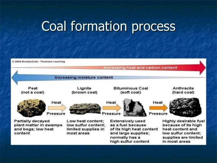 Coal formation process