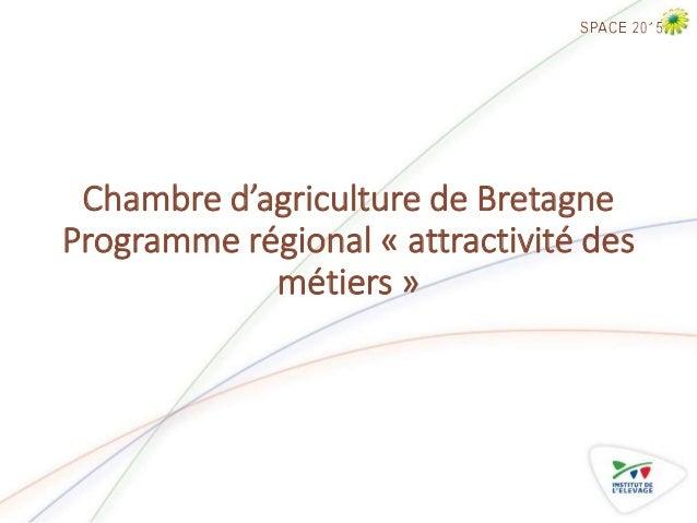 Renforcer l 39 attractivit de l levage - Chambre d agriculture recrutement ...