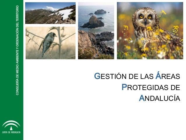 GESTIÓN DE LAS ÁREAS PROTEGIDAS DE ANDALUCÍA