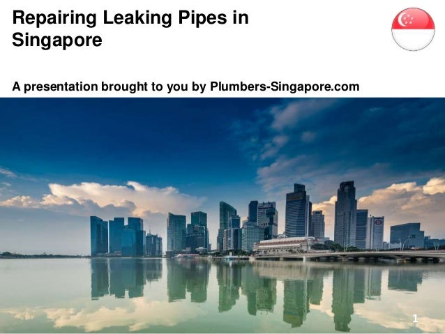 Repairing Leaking Pipes in Singapore A presentation brought to you by Plumbers-Singapore.com 1