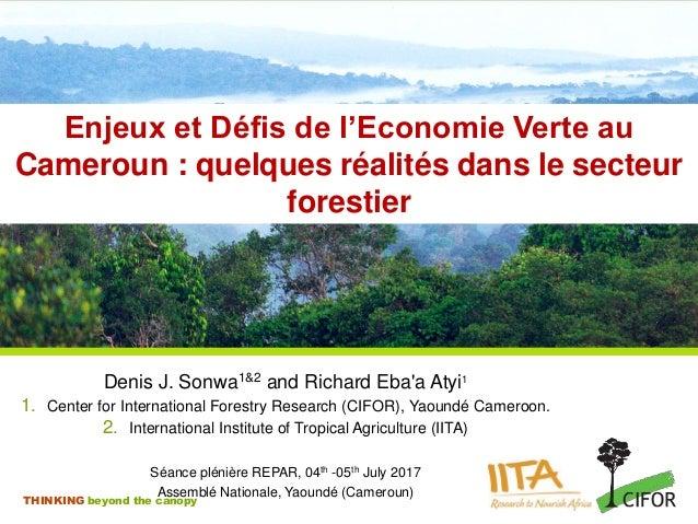 THINKING beyond the canopy Enjeux et Défis de l'Economie Verte au Cameroun : quelques réalités dans le secteur forestier D...