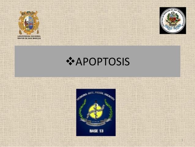 APOPTOSIS  1