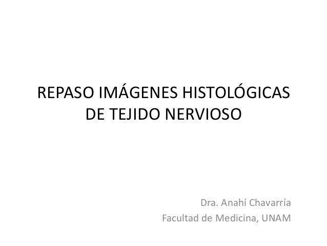 REPASO IMÁGENES HISTOLÓGICAS DE TEJIDO NERVIOSO  Dra. Anahí Chavarría Facultad de Medicina, UNAM
