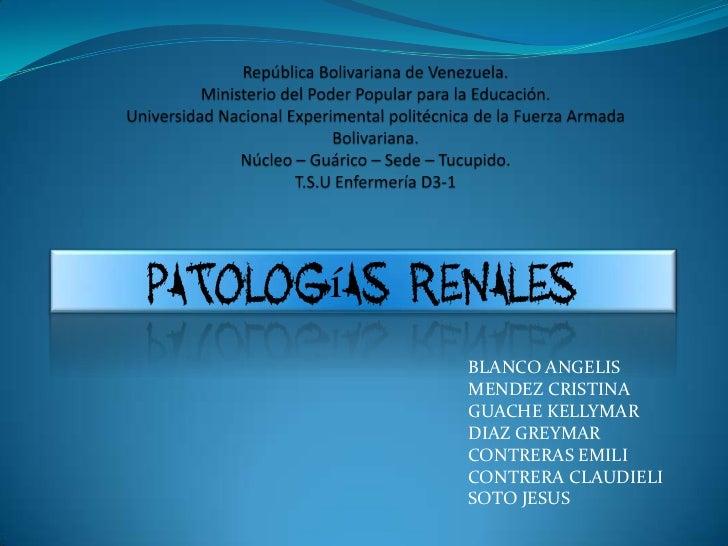 Patologías Renales             BLANCO ANGELIS             MENDEZ CRISTINA             GUACHE KELLYMAR             DIAZ GRE...