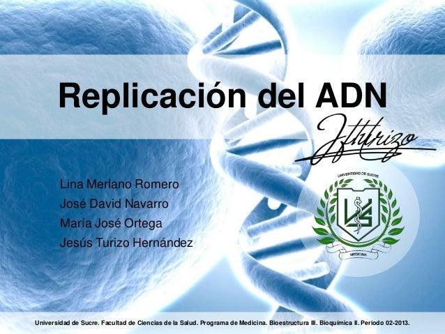 Replicación del ADN Lina Merlano Romero José David Navarro María José Ortega Jesús Turizo Hernández  Universidad de Sucre....