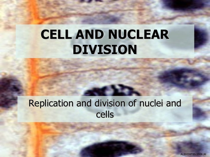 CELL AND NUCLEAR       DIVISIONReplication and division of nuclei and                cells                                ...
