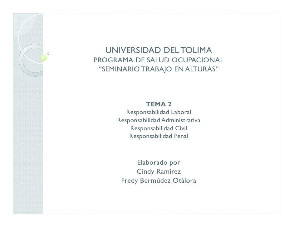"""UNIVERSIDAD DEL TOLIMAPROGRAMA DE SALUD OCUPACIONAL """"SEMINARIO TRABAJO EN ALTURAS""""              TEMA 2        Responsabili..."""