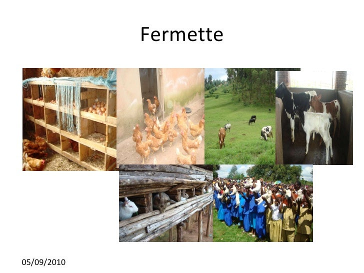 Fermette 05/09/2010