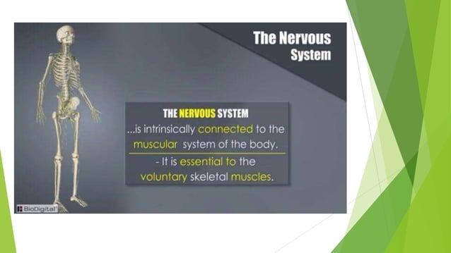Example of adaptability: