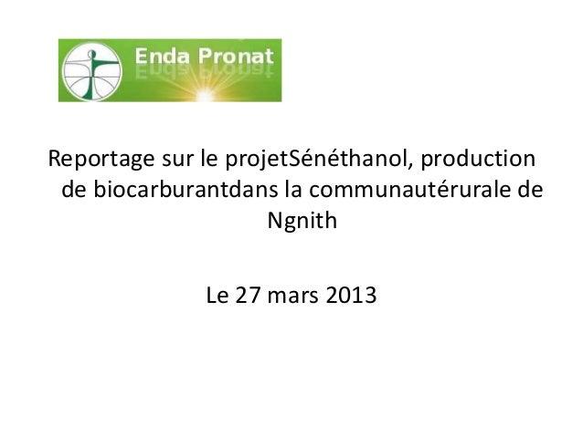 Reportage sur le projetSénéthanol, productionde biocarburantdans la communautérurale deNgnithLe 27 mars 2013