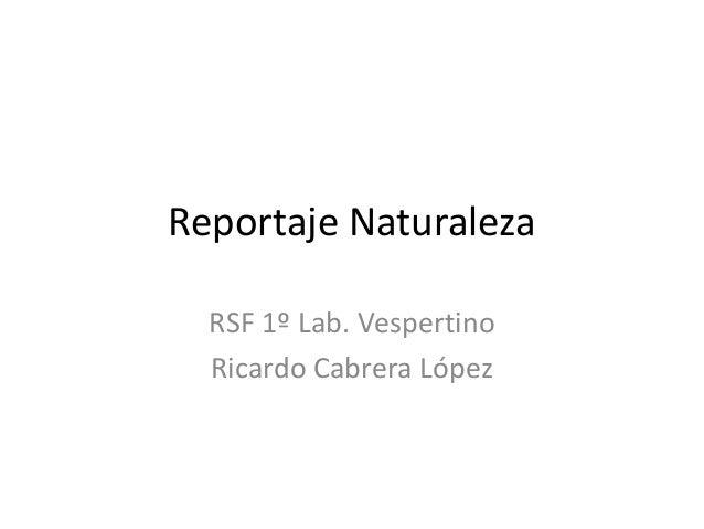 Reportaje Naturaleza RSF 1º Lab. Vespertino Ricardo Cabrera López