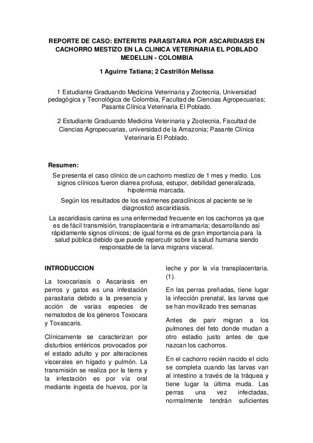 REPORTE DE CASO: ENTERITIS PARASITARIA POR ASCARIDIASIS EN  CACHORRO MESTIZO EN LA CLINICA VETERINARIA EL POBLADO         ...