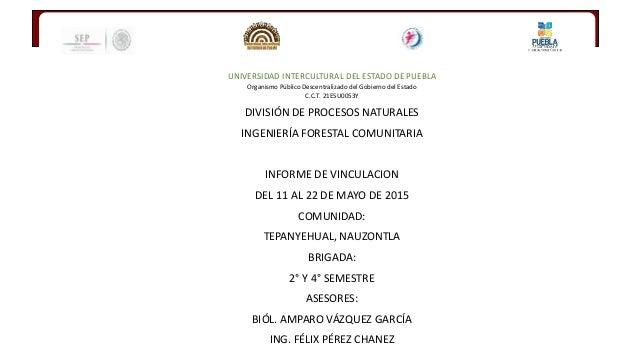 UNIVERSIDAD INTERCULTURAL DEL ESTADO DE PUEBLA Organismo Público Descentralizado del Gobierno del Estado C.C.T. 21ESU0053Y...