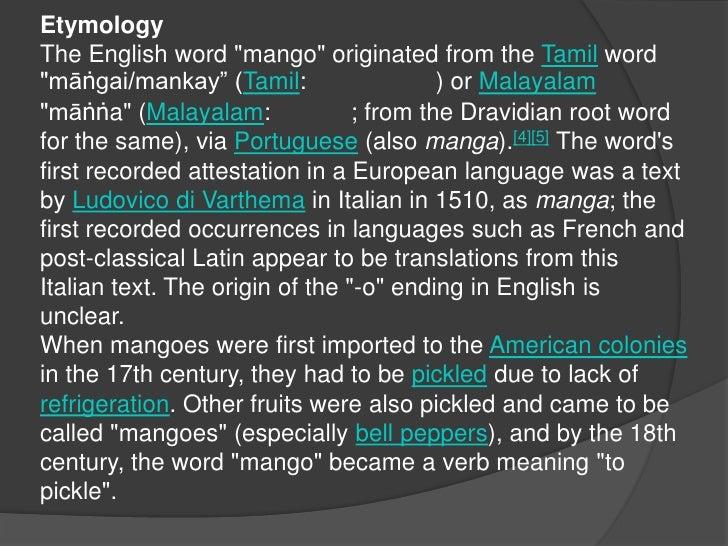 "EtymologyThe English word ""mango"" originated from the Tamil word ""māṅgai/mankay"" (Tamil: மாங்காய்) or Malayalam ""māṅṅa"" (M..."
