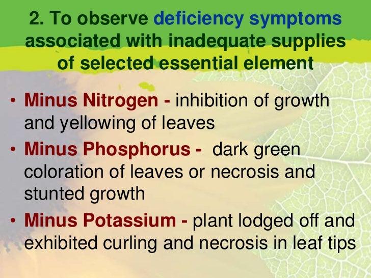 plant physiology mineral nutrition laboratory report Contrat à durée indéterminée : r&d engineer (plant nutrition) h/f chez groupe roullier à st-malo postule dès maintenant et trouve d'autres jobs sur wizbii.