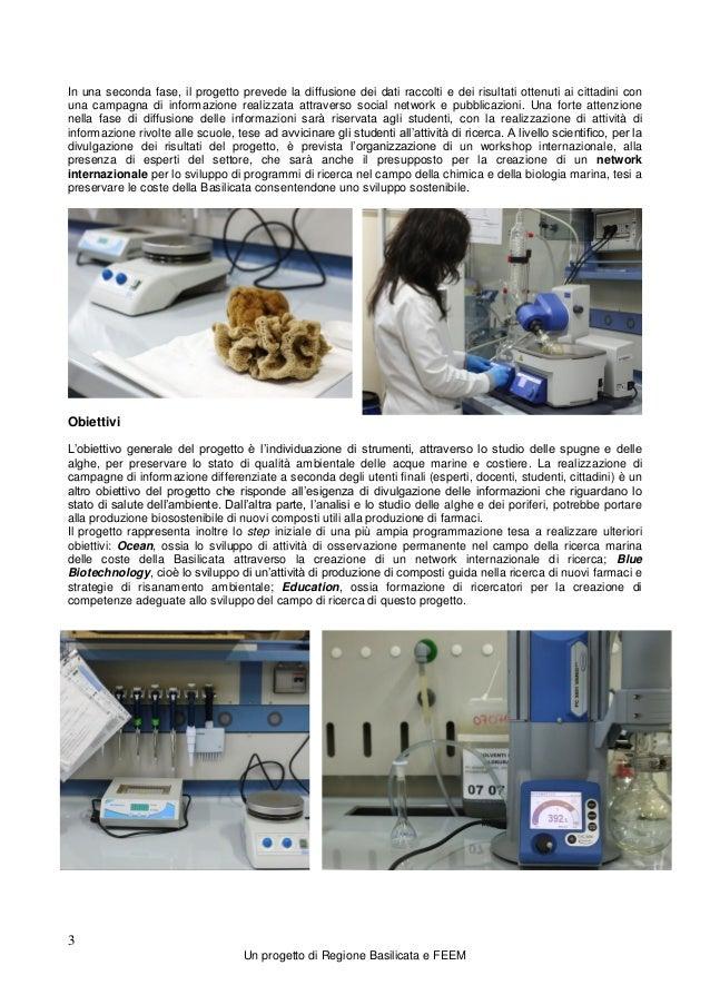 Report Monitoraggio Acque Marine_2 Slide 3