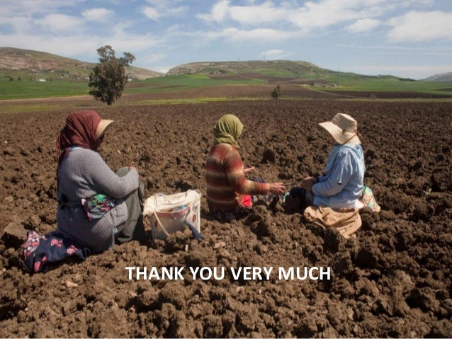 Report on the financial support of the global soil for Soil support