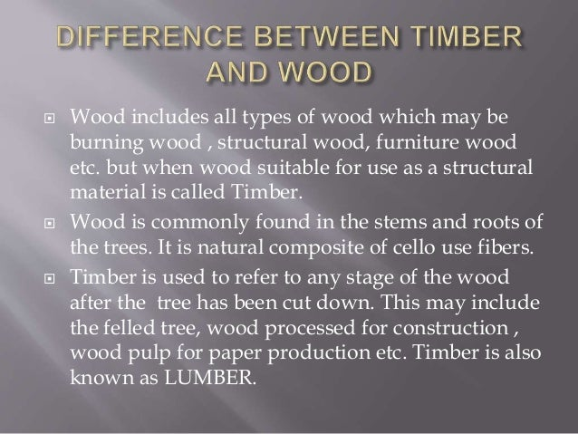 Report On Wood And Timber