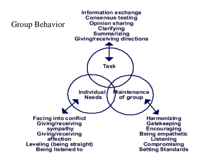 factors that influence individual and group dynamics Learn about group dynamics and the theory behind understanding these processes learn about the factors that affect group dynamics with some real-life examples.