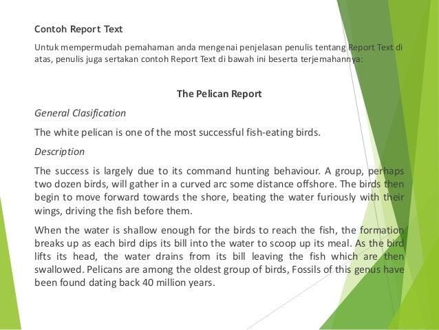 Report text & Conditional Sentence - Tugas Bahasa Inggris ...