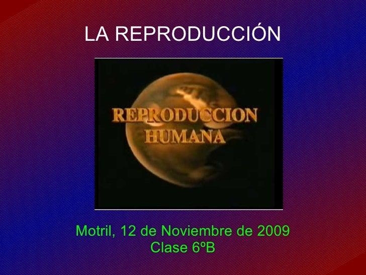 LA REPRODUCCIÓN Motril, 12 de Noviembre de 2009 Clase 6ºB