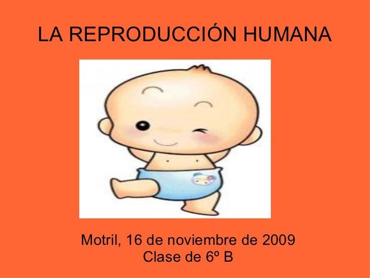 LA REPRODUCCIÓN HUMANA Motril, 16 de noviembre de 2009 Clase de 6º B