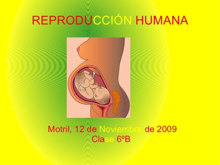 REPRODU CCIÓN  HUMANA <ul><ul><li>Motril, 12 de   Noviembre   de 2009 </li></ul></ul><ul><ul><li>Cla se   6ºB  </li></ul><...