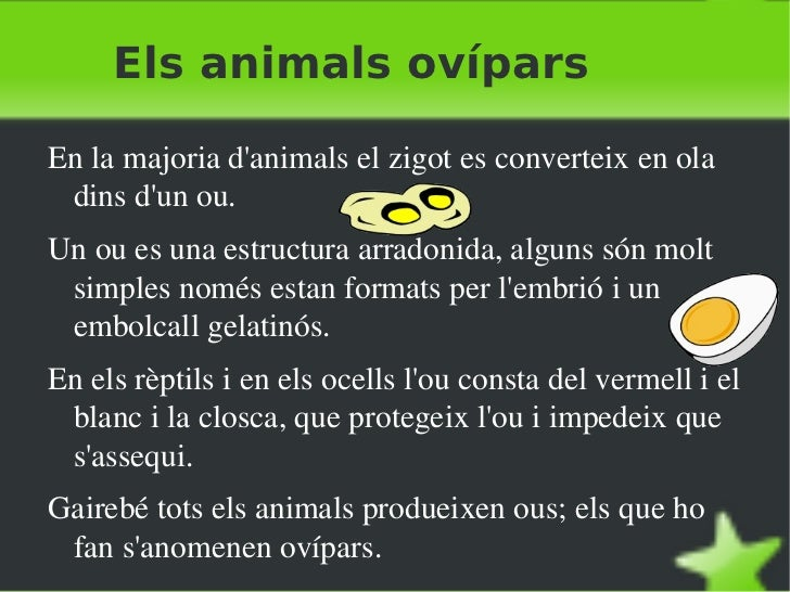Els hermafrodites <ul><li>En algunes espècies d'animals, els individus són alhora mascles i femelles; per tant, tenen test...
