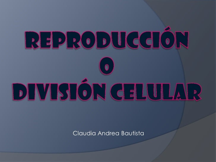 Claudia Andrea Bautista