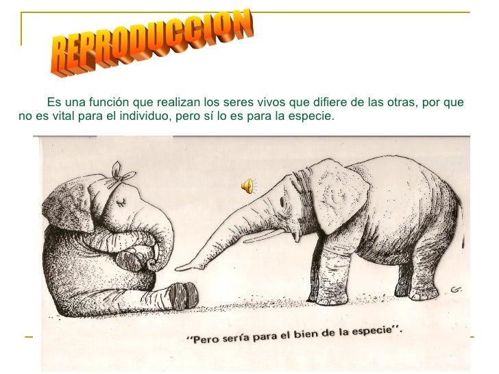 REPRODUCCION Está  Es una función que realizan los seres vivos que difiere de las otras, por que no es vital para el indiv...